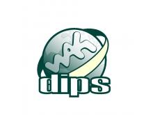 DIPS - systém pro podporu krizových managerů